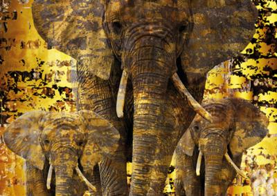 Mondiart Bas – Elephants