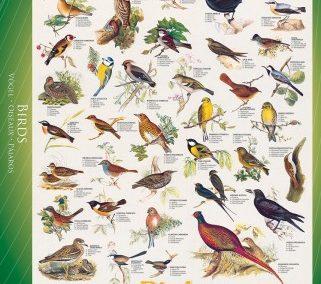 puzzel Eurographics Birds